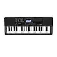CASIO CT-X 800 Organo