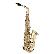 STAGG WSTS215S High F# Saxo Tenor