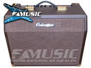 CRIMSON A25C 2 Canales Multiple 25w Teclado Voz Guitarra