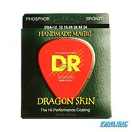 DR DSA-12