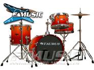 TAURUS MFP-410/5