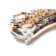 BG A65S seca zapatillas saxo