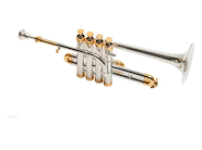 PARQUER Trompeta Usada Piccolo Sib/La Plateada usada