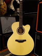 CRAFTER HJ-100CE