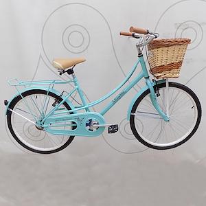 Bicicleta infantil rodado 24