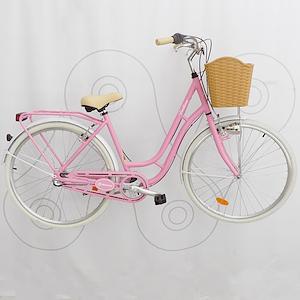 Bicicleta Motomel Fontana deluxe Nexus 3v