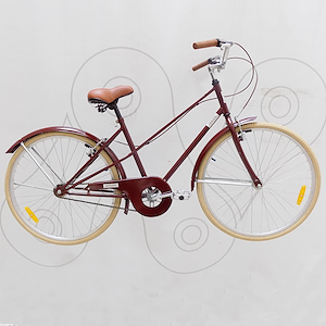 Bicicleta paseo rodado 26