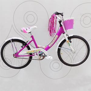Bicicleta Niñas Rodado 20 Python Candy